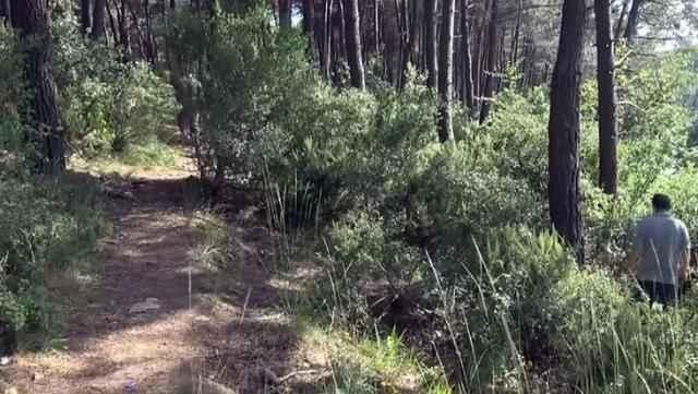 23 gündür kayıp olan gencin cesedi ormanda ağaca asıl halde bulundu