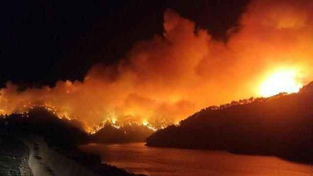 Türkiye için kara gün! Manavgat'tan sonra 5 şehirde daha yangın çıktı