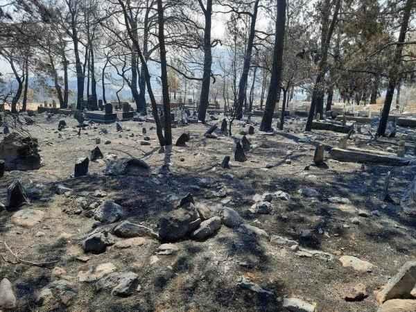 Yangında dikkat çeken detay! Mezarlıktaki şehit kabri ve Türk bayrağı yanmadı