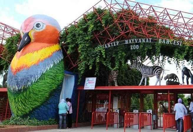 Türkiye'nin en büyük hayvanat bahçesi ziyarete kapatıldı
