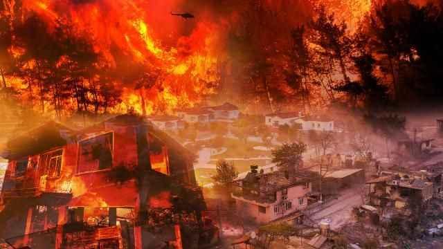 Günlerdir devam eden yangınlar geride acı manzaralar bıraktı! Her yer küle döndü