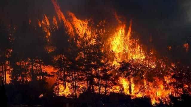 Son durumu Bakan Pakdemirli paylaştı! İşte il il kontrol altına alınan ve süren yangınlar