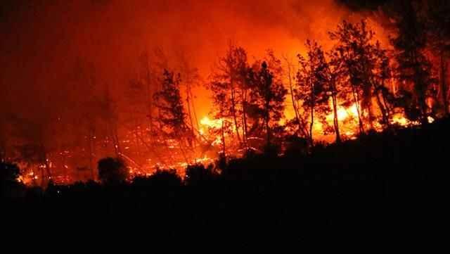 Büyük tehlike! Alevler her geçen saniye termik santrallere yaklaşıyor