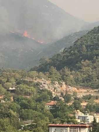 Alanya'da ciğerlerimiz yanmaya devam ediyor! İşte Güzelbağ'daki son durum
