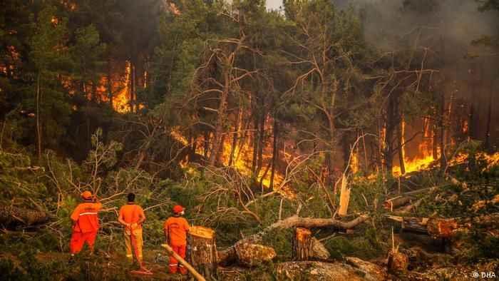 Ormancılardan çarpıcı Manavgat raporu: Daha sık ve şiddetli yangınlar olacak