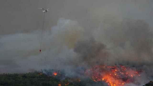 217 yangın kontrol altına alındı, 6 noktada alevlerle mücadele ediliyor! İşte il il son durum