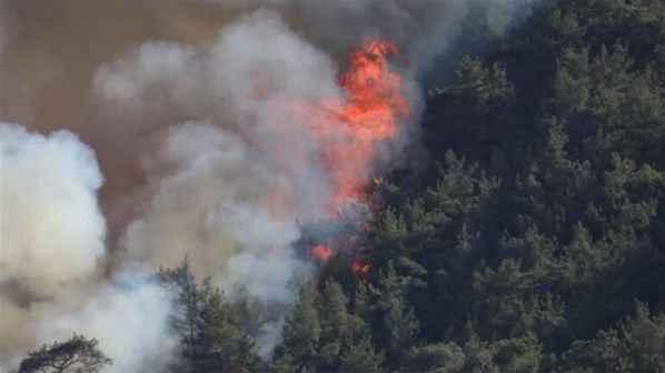 Bir orman yangını daha çıktı! Evler tahliye edildi...