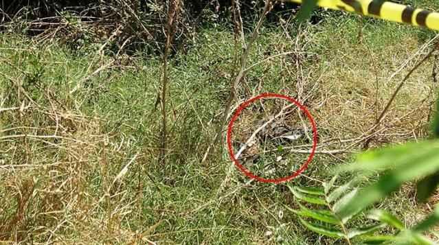 Korkunç manzara: Çöp sandı, ceset çıktı!