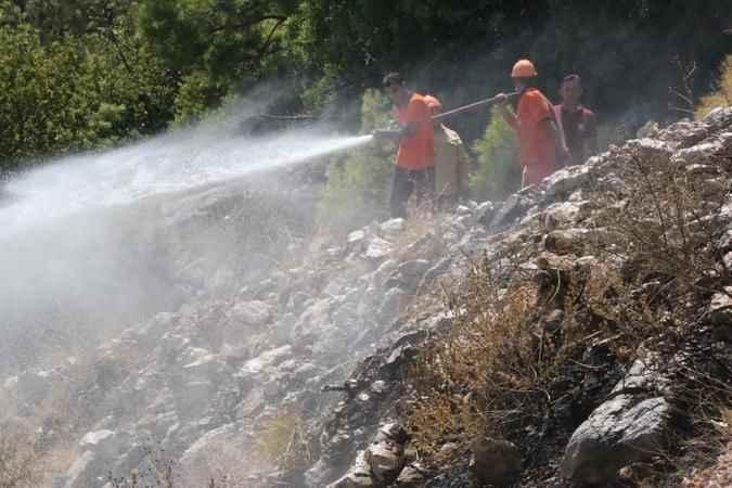 Antalya BŞB, yangın bölgelerini ilaçlıyor