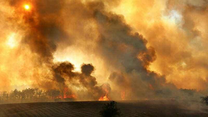 Uzmanlardan kritik uyarı! Orman yangınları Kovid'e yakalanma riskini artırabilir