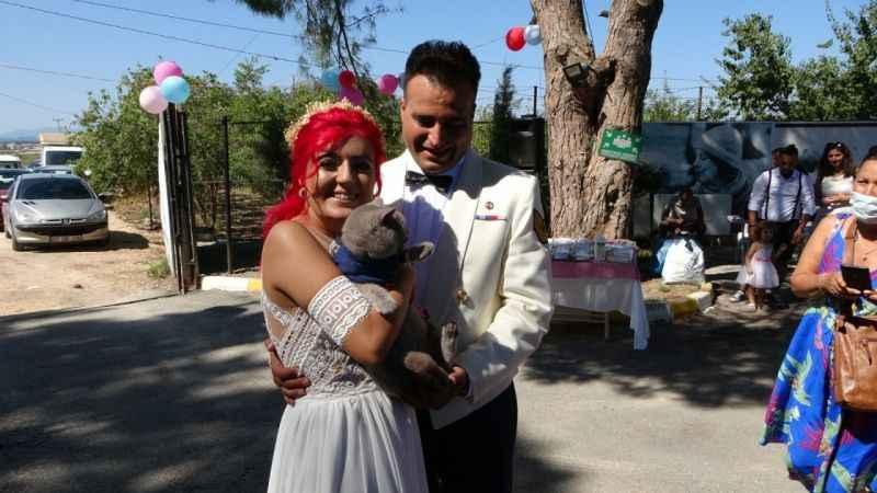 Manavgat Hayvan Barınağı'nda evlendiler!