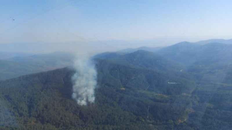 Ormanlık alanda çıkan yangına havadan ve karadan müdahale ediliyor