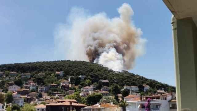 Son Dakika! Orman yangını çıktı, bölgeye itfaiye ekipleri sevk edildi