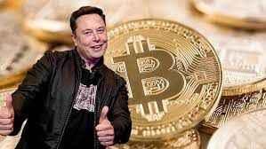 Elon Musk yine ortalığı karıştırdı! Floki kimdir?