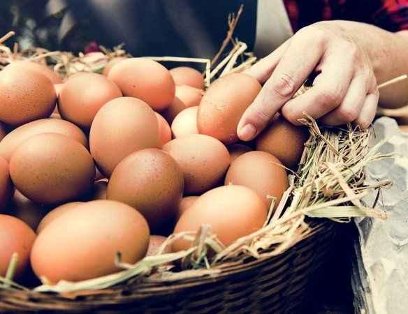 Yumurta fiyatları uçtu!