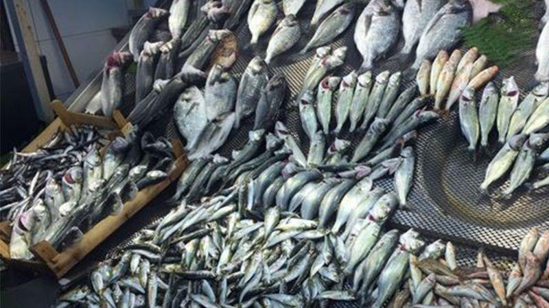 Balık Pazarı tatsız
