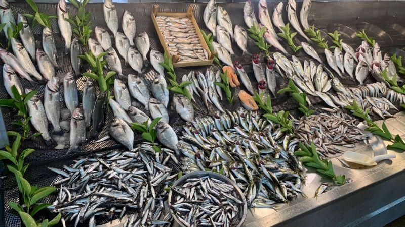 Balık var, alıcı yok