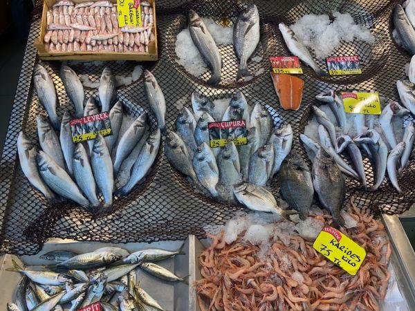 Ege balıkları pazara geldi