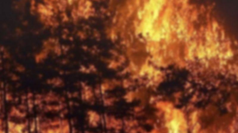 Kaz Dağları'nda yangın söndü