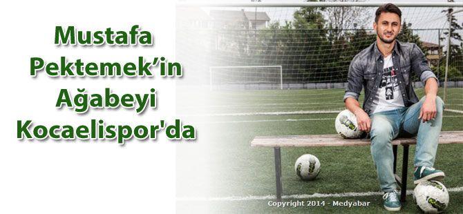 Mustafa Pektemek'in ağabeyi Kocaelispor'da