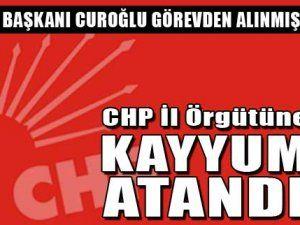 CHP İl Örgütüne Kayyum atandı