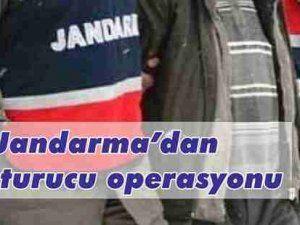 Jandarma'dan Uyuşturucu Operasyonu 8 Gözaltı var
