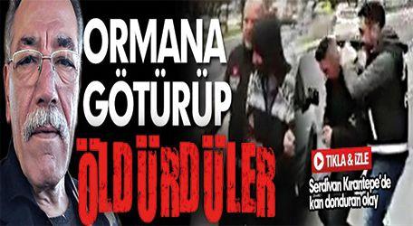 Serdivan'da ormana götürüp öldürdüler