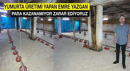 """Yumurta üretimi yapan Emre Yazgan """"para kazanamıyor zarar ediyoruz"""""""