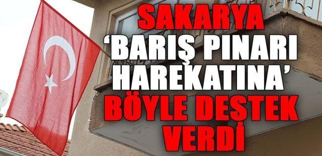 Barış Pınar Harekatı'na Türk bayraklı destek