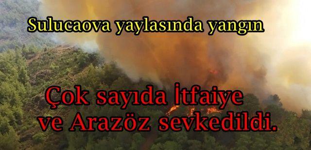 Sulucaova yaylasında orman yangını