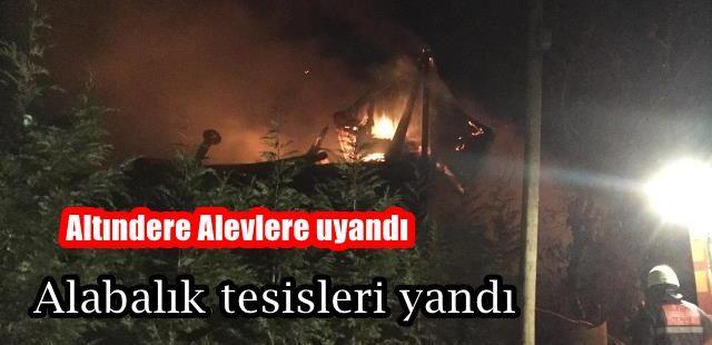 Altındere alevlere uyandı Alabalık Tesisleri yandı