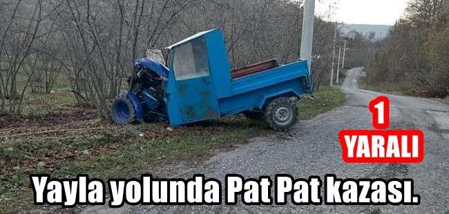 Yayla yolunda Pat Pat kazası. 1 yaralı