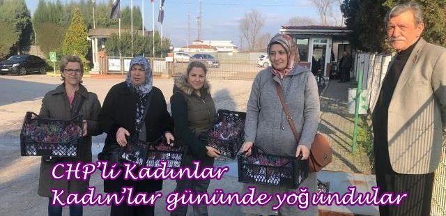 CHP'li Kadınlar Kadın'lar gününde yoğundular