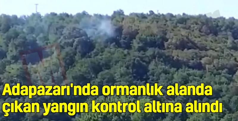 Adapazarı'nda ormanlık alanda çıkan yangın kontrol altına alındı