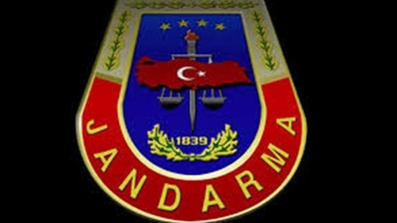 Jandarma Akyazı'daki bu görüntüleri cezasız bırakmadı