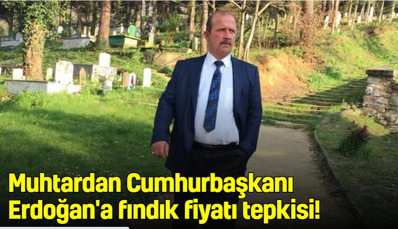 Muhtardan Cumhurbaşkanı Erdoğan'a fındık tepkisi!