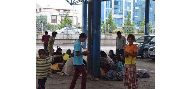 Suriyeli mülteciler Perşembe Pazarı alanına yerleşti