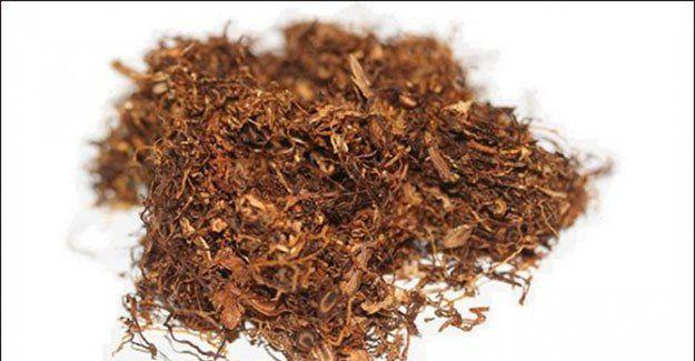 Tütün ihracatına rekor!