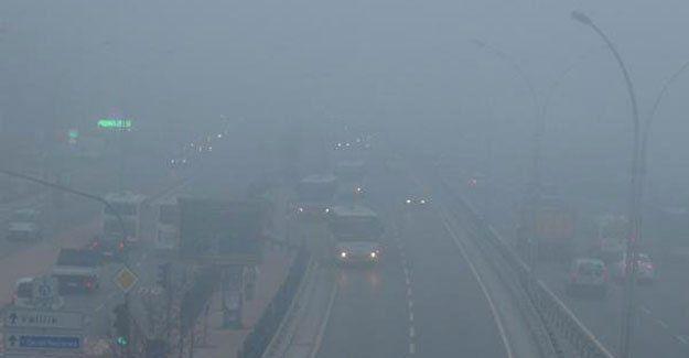 İzmit'te yoğun sis