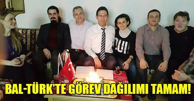 Bal-Türk'te görev dağılımı