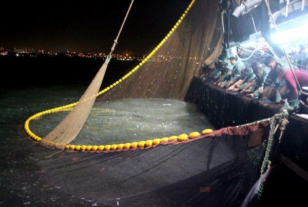 Balıkçılar bol hamsiyle döndü