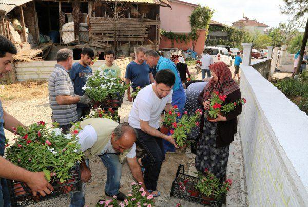 Başiskele Belediyesi, mezarlıklarda 4 bin adet mevsimlik çiçek dağıtı