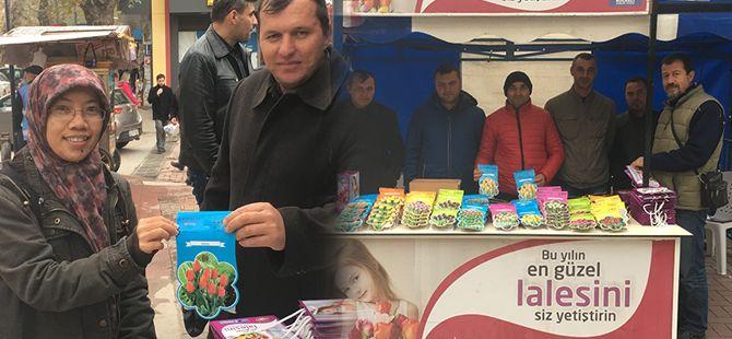 Lale soğanları satışa çıktı