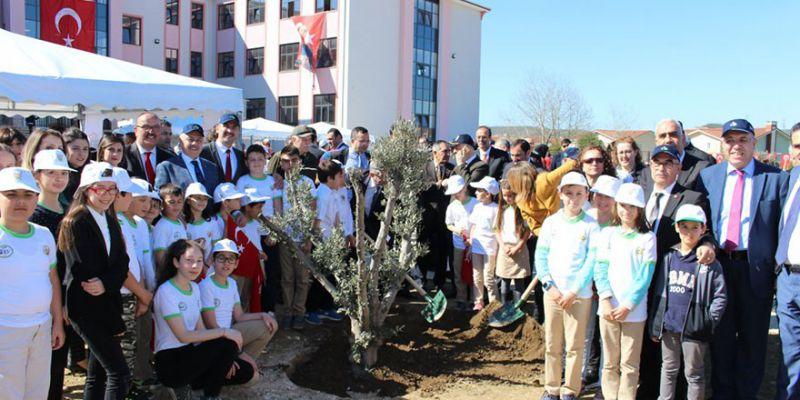 Okulun bahçesi ağaçlandı
