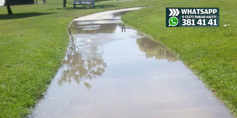Sekapark'ta şebeke suyuyla sulama iddiası