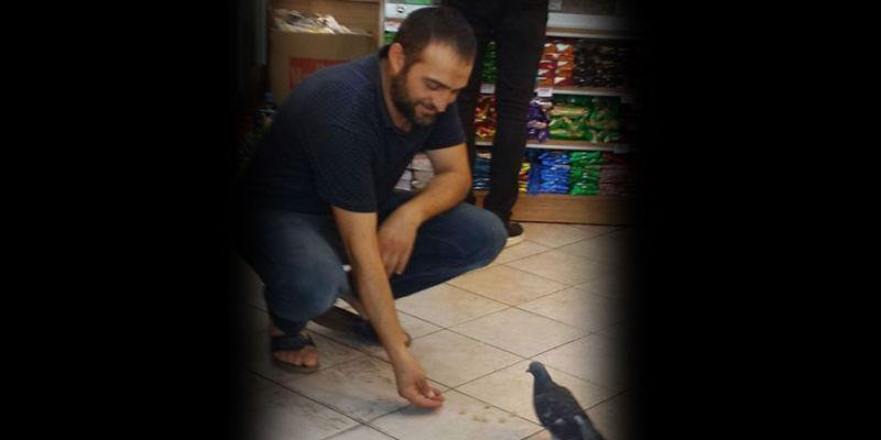 Dükkana gelen güvercini hergün elleriyle besliyor