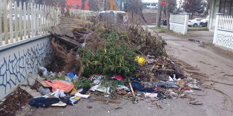 Biriken çöp ve atıklar halkı rahatsız ediyor