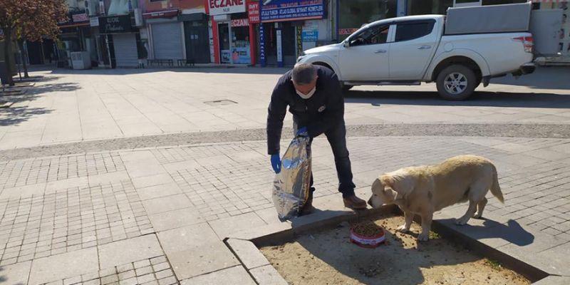 Sokağa çıkma yasağında hayvanları zabıta besledi