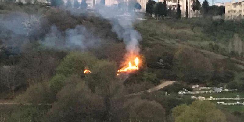 Ağaçlık alanda çıkan yangın korkuttu