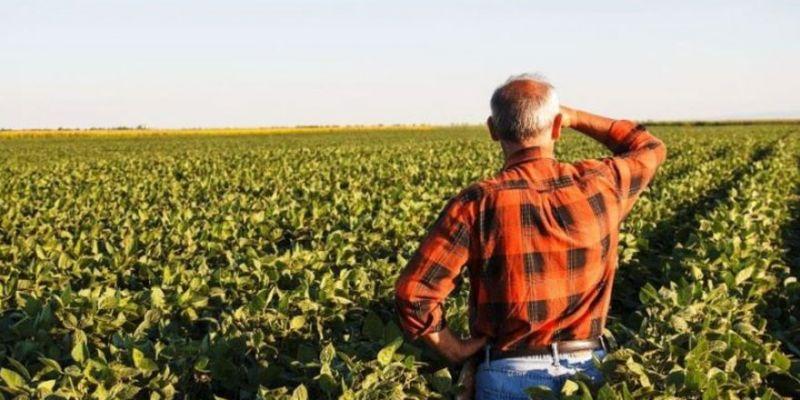 Bakan duyurdu: Çiftçiye 3,5 milyar TL destek